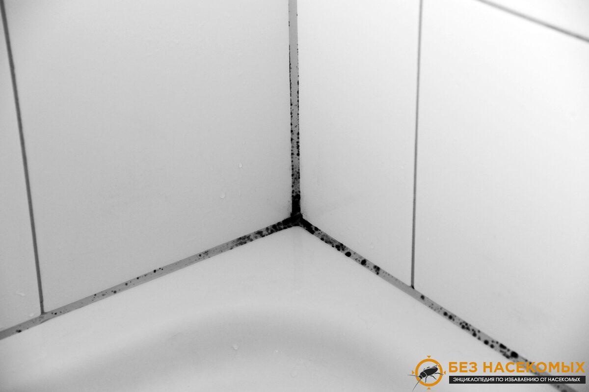 средства от плесени в ванной